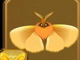 Green-banded Uranus Moth