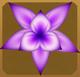 Hawkmoth Set§AF 100%