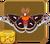Cecropia Moth§Headericon