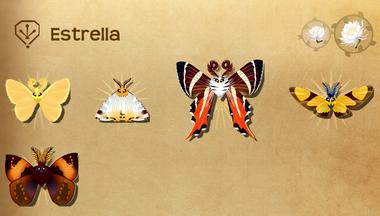 Estrella Set§Flutterpedia