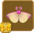 Pink Star Moth§Headericon