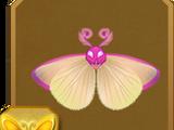 Pink Star Moth