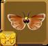 Hieroglyphic Moth§Headericon