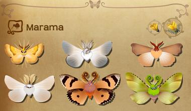 Marama Set§Flutterpedia