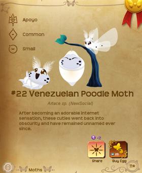 Venezuelan Poodle Moth§Flutterpedia