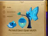 Mottled Opal Moth