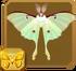 Luna Moth§Headericon