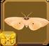 Isabella Tiger Moth§Headericon
