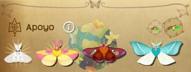 Apoyo Set§Flutterpedia