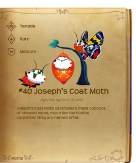 Joseph's Coat Moth§Flutterpedia
