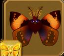 Diva Moth