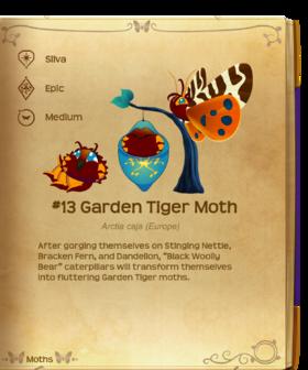 Garden Tiger Moth§Flutterpedia