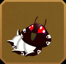 Penella Burnet§Caterpillar