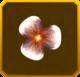 Hanwi Set§AF5 10%