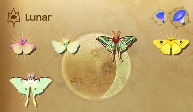 Lunar Set§Flutterpedia