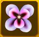 Hanwi Set§AF4 50%