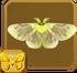 Lymantriid Moth§Headericon