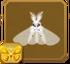 Venezuelan Poodle Moth§Headericon