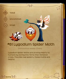 Lygodium Spider Moth§Flutterpedia