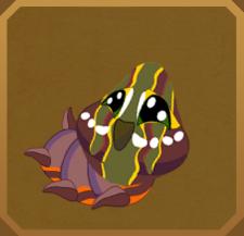 Imperial Fruit Sucking Moth§Caterpillar