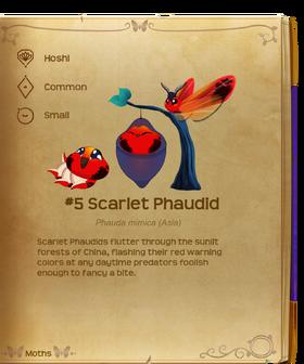 Scarlet Phaudid§Flutterpedia