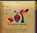 Scarlet Phaudid