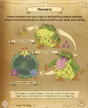 Flutterpedia Flowers