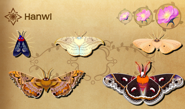 Hanwi Set§Flutterpedia