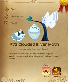 Clouded Silver Moth§Flutterpedia