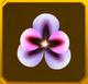 Hanwi Set§AF4 20%