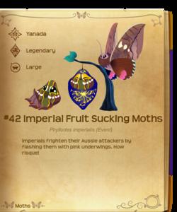 Imperial Fruit Sucking Moths§Flutterpedia
