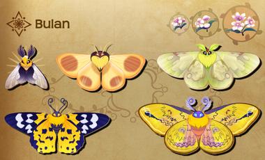 Bulan Set§Flutterpedia