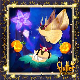 Vampire Moth§Facebook