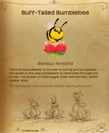 BumbleBee§Flutterpedia
