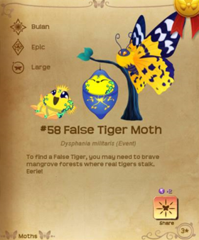 False Tiger Moth§Flutterpedia