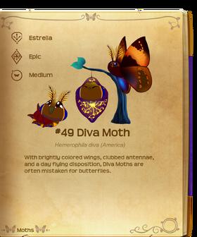 Diva Moth§Flutterpedia