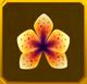 Hanwi Set§AF3 20%