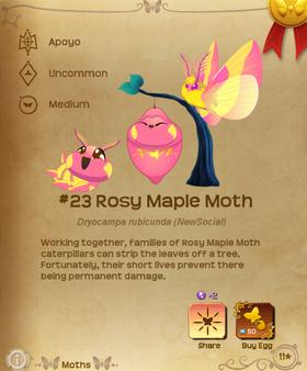Rosy Maple Moth§Flutterpedia