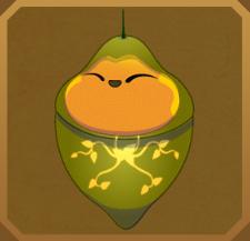 Salaminia Fruit-Piercing Moth§Pupa