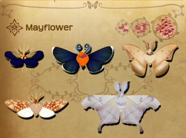 Mayflower Set§Flutterpedia