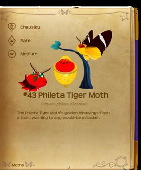 Phileta Tiger Moth§Flutterpedia