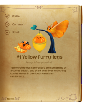 Yellow Furry-legs§Flutterpedia