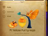 Yellow Furry-legs