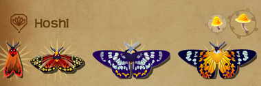 Hoshi Set§Flutterpedia