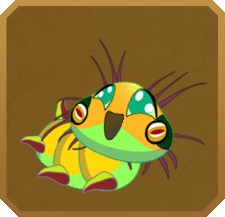 Spanish Moon Moth§Caterpillar