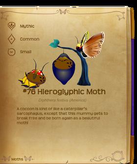 Hieroglyphic Moth§Flutterpedia