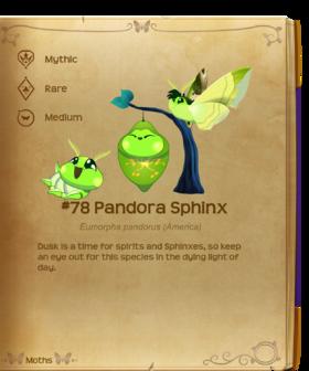 Pandora Sphinx§Flutterpedia