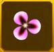Hanwi Set§AF4 10%