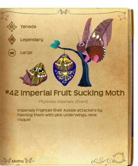Imperial Fruit Sucking Moth§Flutterpedia