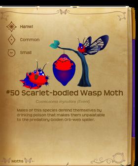 Scarlet-bodied Wasp Moth§Flutterpedia